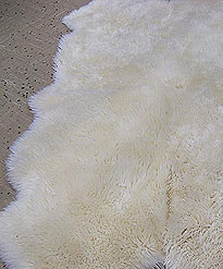 Sheep Skin   repair rate